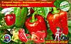 Сладкий перец - выращиваем рассаду из семян по правилам