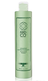 Реконструирующий шампунь Green Light Re-Co Hair Wellness Restructuring Shampoo 300 ml