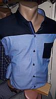 Мужская рубашка оптом и в розницу