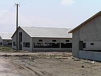 Свинарник 24*120