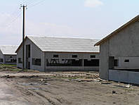 Здание сельскохозяйственного назначения 24*120