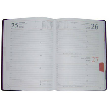 Ежедневник датированный 2020 BRISK OFFICE WINNER Стандарт А5 (14,2х20,3) серый, фото 2