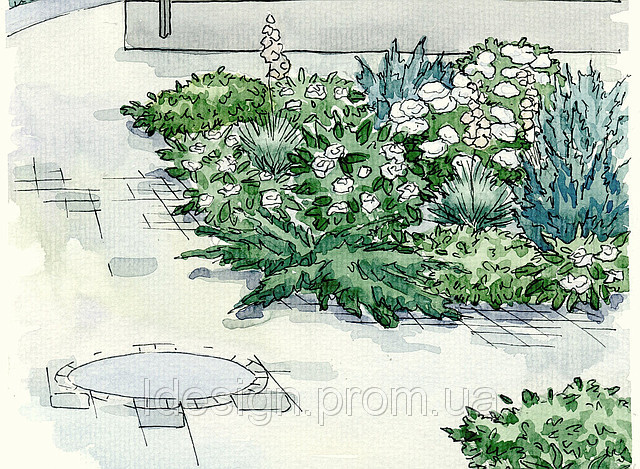 Белый цветник у дома