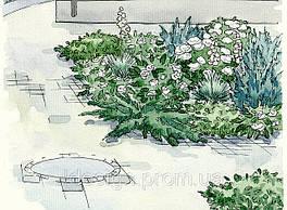 Белый цветник у дома 1
