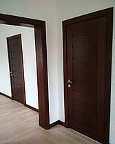 Двери/двері, фото 2