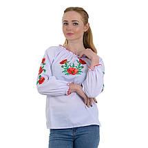 Классическая женская вышиванка с маками Маковая Роса, фото 3