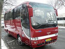 Лобовое стекло автобуса Temsa OPALIN