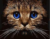 Раскрашивание по номерам Кошачий взгляд (BK-GX21674) 40 х 50 см (Без коробки)