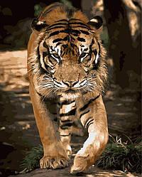 Картина для рисования Грация тигра (BK-GX21730) 40 х 50 см (Без коробки)