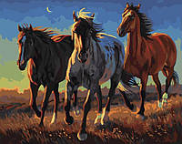 Рисование по номерам Степные лошади (BK-GX21863) 40 х 50 см [Без коробки]