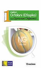Семена дыни Ортолани (Эфиопка) 10 шт, Империя семян