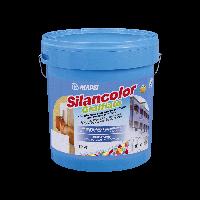 Вододисперсионная водоотталкивающая силиконовая штукатурка  Silancolor Graffiato Mapei | Силанколор Граффиато