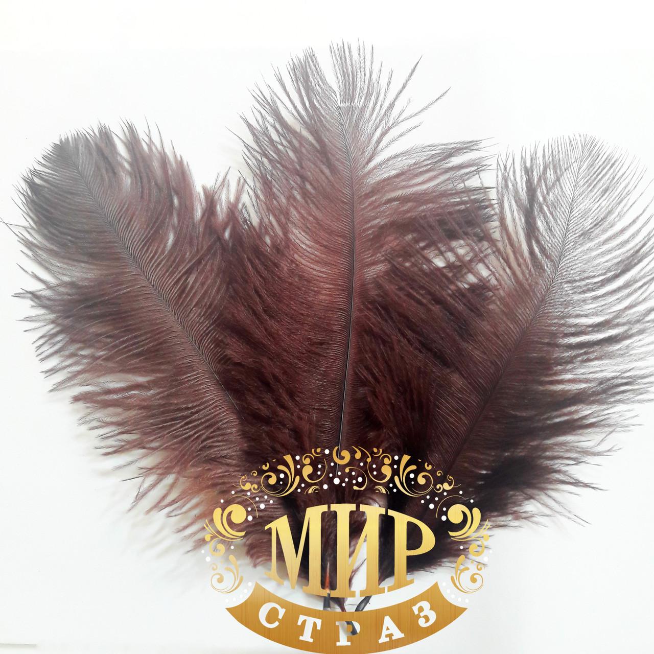 Перо страуса, цвет Шоколад, размер 15-20cм*1шт
