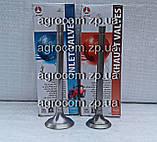 Комплект клапанів МТЗ-80, Д-240 впускний і випускний, фото 3