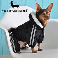 Одежда Комбинезон для собак Rossi