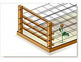 Шпалерная сетка 1000 м х 1,2 м белая , фото 2