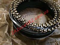 Кольца поршневые Ланос Lanos 1.4 Автозаз 77.5 стандарт оригинал заводские наборные 317-1000101-11, фото 1