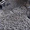 Товарный бетон БСГ В35 Р4 F75 (Н) осадка конуса 16-20см температура от -10°С до -15°С