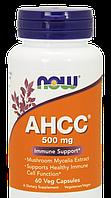 Now AHCC 500mg 60 caps