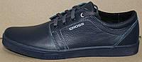Мужские кожаные туфли синие на шнурках, кожаные туфли мужские от производителя модель АМТК-2С