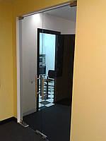 Стеклянные маятниковые двери, фото 1