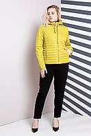 Демисезонная короткая куртка больших размеров 48-62