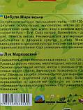 Лук Марковский 8г, фото 2