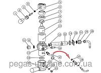 Схема запчастей к Пегас классик