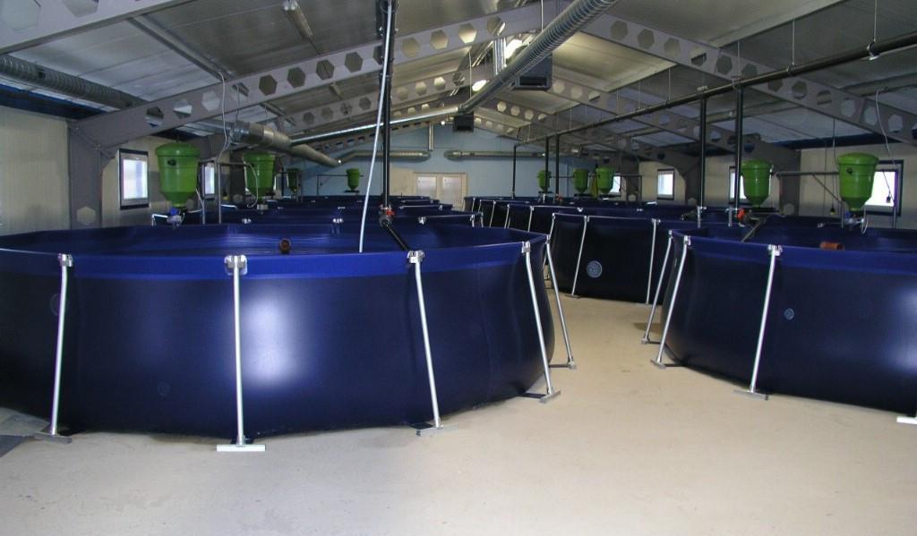 Бассейн для УЗВ, объем 3000 литров