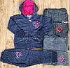 Трикотажный костюм 2 в 1 для девочек оптом, Taurus, 98-128 см,  № F-433
