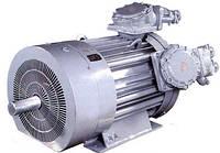 ВАОК315В6 110кВт 1000об/мин (электродвигатель ВАОК 110/1000)