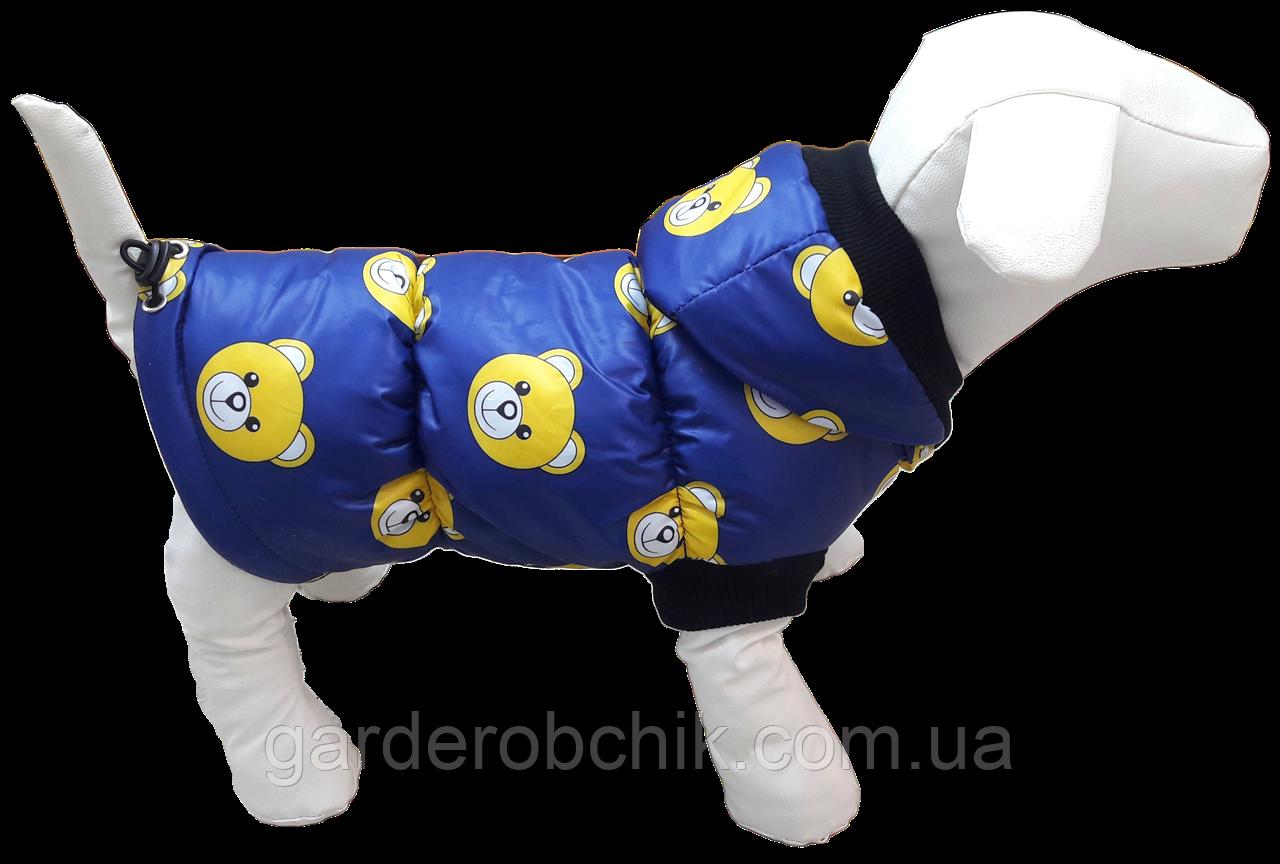 Жилет, куртка для собаки. Одежда для собак