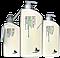 Mint shampoo  - Шампунь для глубокой очистки жирных волос и кожи головы 1000мл
