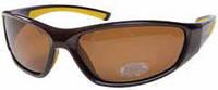 Поляризационные очки SALMO 2513