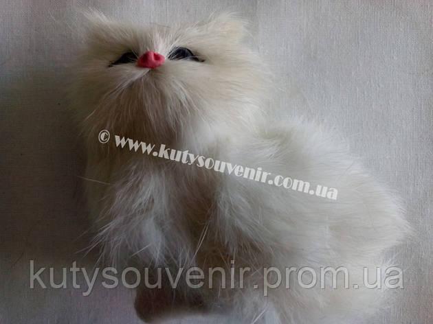 Кот музыкальней, фото 2