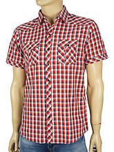 Сорочки повсякденні з коротким рукавом