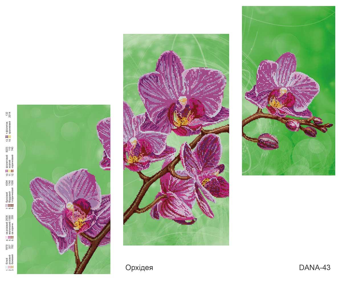 Схема для частичной вышивки бисером Орхидея