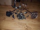 Кована троянда, фото 6
