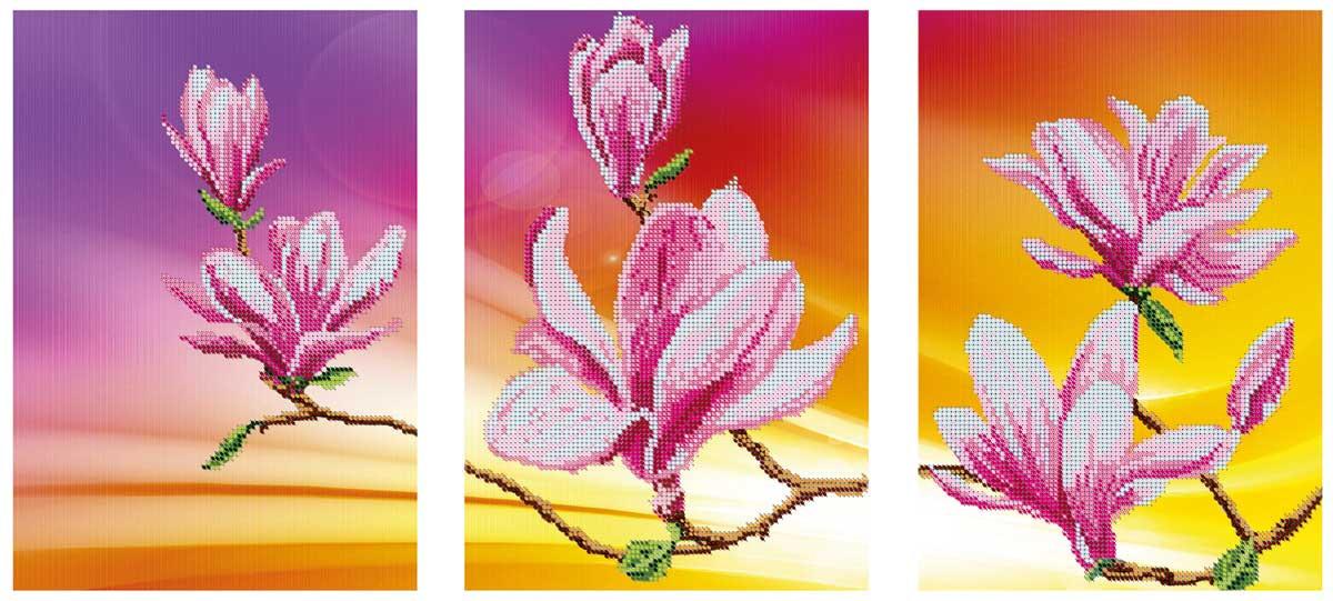 Цвітіння магнолій