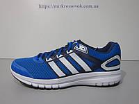 Кроссовки мужские  Adidas Duramo 6 M (B40950) (оригинал)