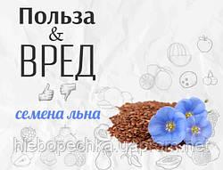 Все, что необходимо знать про семена льна: польза и вред семян льна (как правильно хранить суперфуд)
