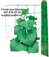 Шпалерная огуречная сетка (1.7*500), Украина, фото 1