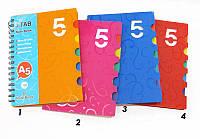 Тетрадь  на спирали А5 100л. пластиковая обложка 5 разделов Sat NoteBook