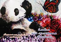 Альбом для рисования А4 14л. Фолдер для красок 691779