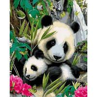 Картина раскраска по номерам на холсте 40*50см Babylon VP812 Малыш панда