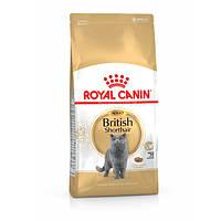 Royal Canin (Роял Канин) British Shorthair Adult 34 - корм для британских кошек старше 12 месяцев, 4кг.