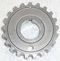 Шкив вала коленчатого ВАЗ 1118 зубчатый (пр-во АвтоВаз)