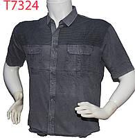 Рубашка мужская Ot-thomas поло