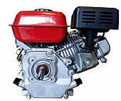 Двигатель бензиновый PT-210
