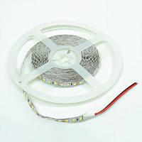 Светодиодная лента Venom SMD 2835 120д.м. негерметичная (IP33) Premium